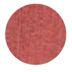 Fabric Cookie_Red