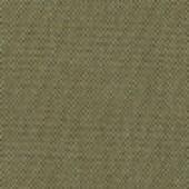 Grade B_ Fife Lichen
