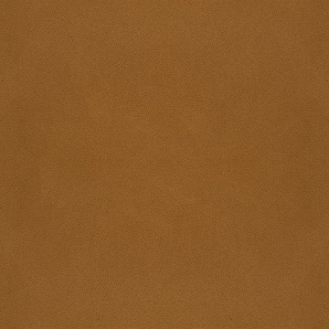 Hide leather_ Cognac