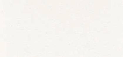 Q429 Cuir Blanc