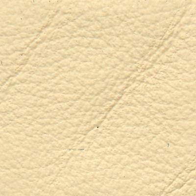 Pelle Frau SC 61 sabbia