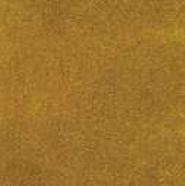 TVE08 Terciopelo Amarillo
