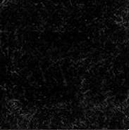 TVE17 Terciopelo Negro