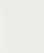 PR01 Weiß Leder Premium