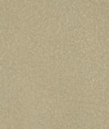 PR03 Beige Leder Premium