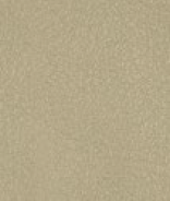 PR03 Piel Premium Beige
