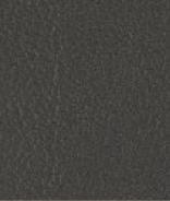 PR10 Anthrazit Leder Premium