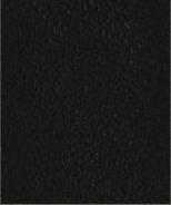 PR11 Schwarz Leder Premium
