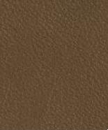 PR15 Haselnuß Leder Premium