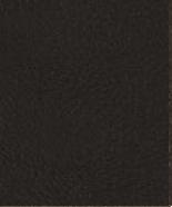 PR17 Dunkelbraun Leder Premium