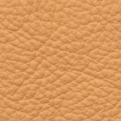 leather Frau SC 63 suede