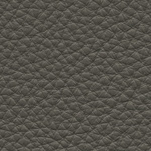 Leather_ Pelle Frau® SC_ 28 Seppia