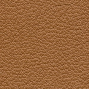 Leather_ Pelle Frau® SC_ 66 India