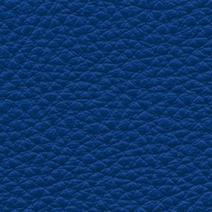 Leather_ Pelle Frau® SC_ 248 Iris