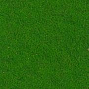 1710 Feltro verde