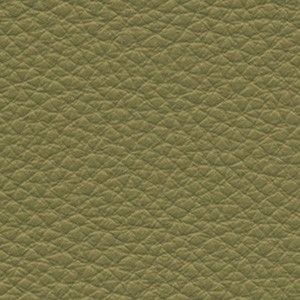 Leather_ Pelle Frau® SC_ 175 Bengali Green