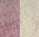 Pink/ White