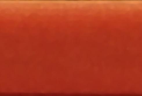 Terciopelo L1340_ 12