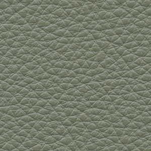 Leather_ Pelle Frau® SC_ 180 Celadon