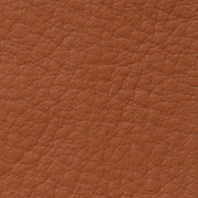 leather Frau SC 66 india
