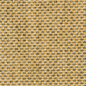 Canvas_ B508 Citron