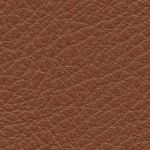 Leather P1_ Pereira_ 01