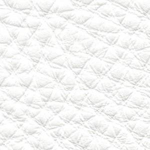 Leather P1_ Pereira_ 04