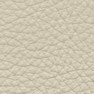 Leather P1_ Pereira_ 05