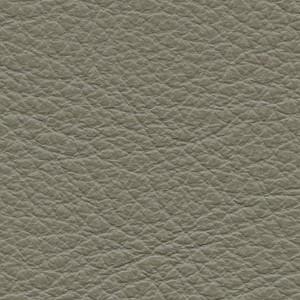 Leather P1_ Pereira_ 07