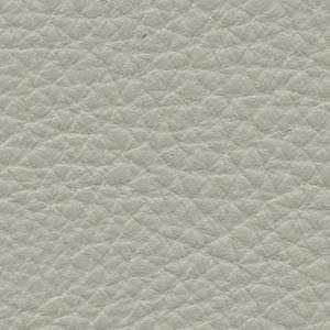 Leather P1_ Pereira_ 08