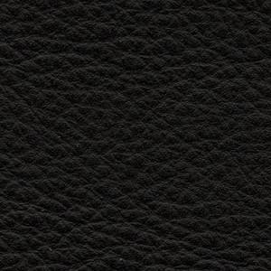 Leather P1_ Pereira_ 10