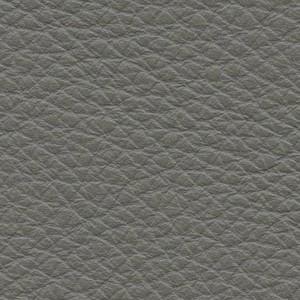 Leather P1_ Pereira_ 13