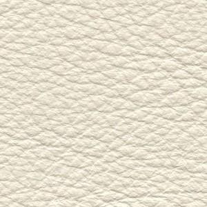Leather P1_ Pereira_ 17