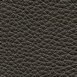 Leather P2_ Aspen_ 01