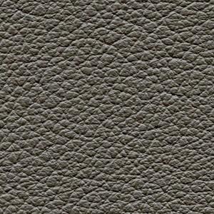 Leather P2_ Aspen_ 02