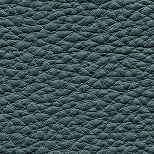 Leather P2_ Aspen_ 05