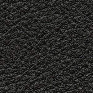 Leather P2_ Aspen_ 06
