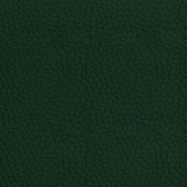 Leder Koto grün