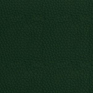 Leather Koto green