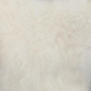 Cashmere Bianco