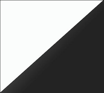 Bicolor Lacado_ Blanco & Negro