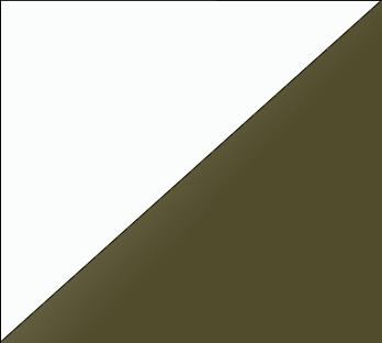 Bicolor Lacado_ Blanco & Khaki