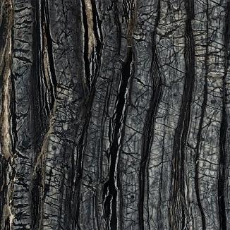 mármol Kenya Black mate (MR2)