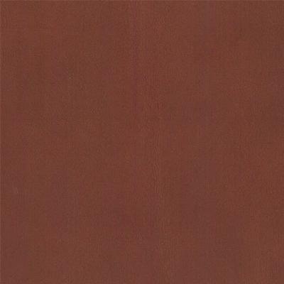 B0180 - [CA] Pelle Ground oak - Y