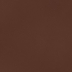 Leather Spectrum_ Rust