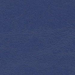 NÁUTICA_ Navy