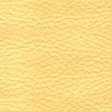 Leather_ Yellow