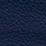 Leather_ Bluette