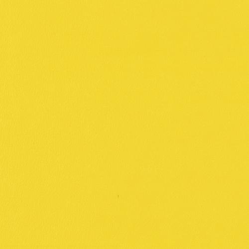 Vinyl_ Sunflower