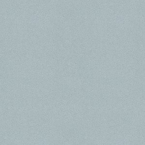 Divina_171 gris clair